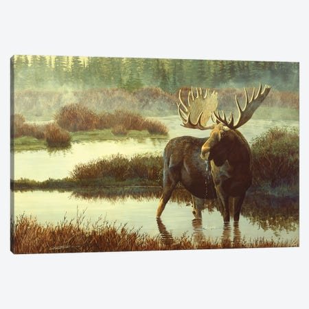 Moose Canvas Print #MGU12} by Jan Martin Mcguire Art Print