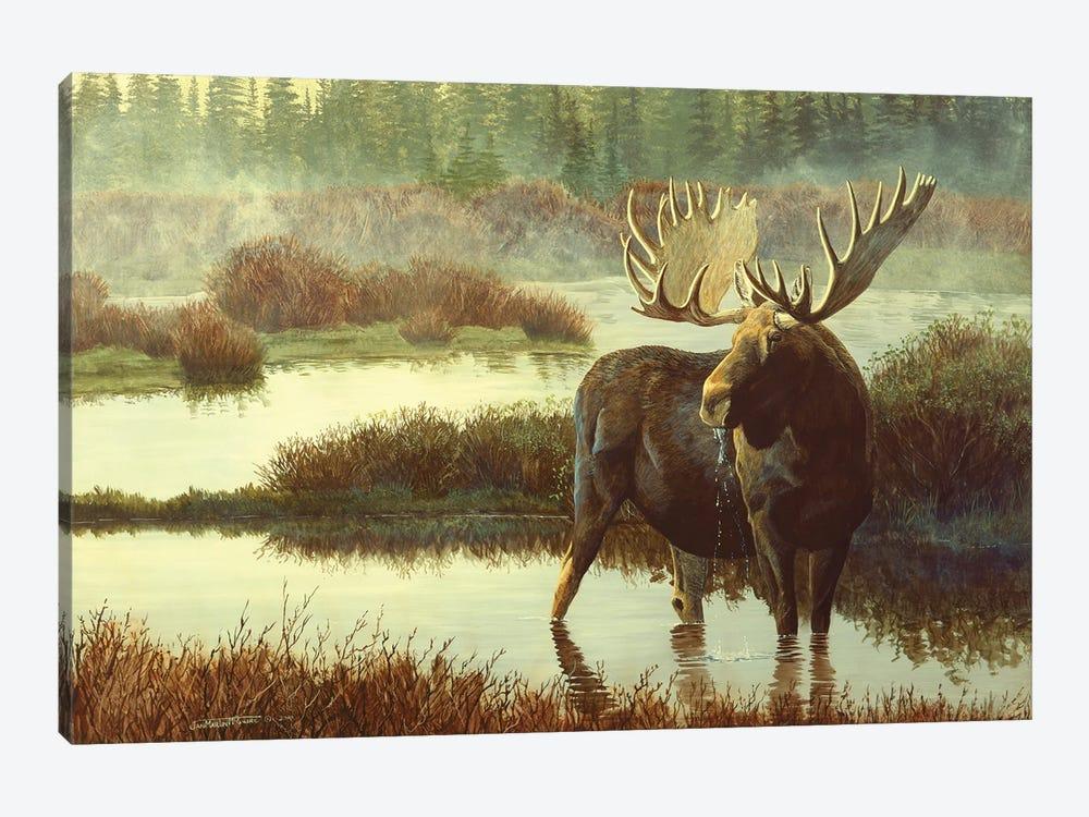 Moose by Jan Martin Mcguire 1-piece Art Print