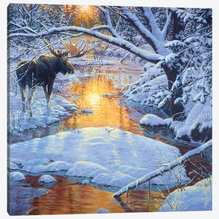Moose XXIX Canvas Print #MGU13} by Jan Martin Mcguire Canvas Print