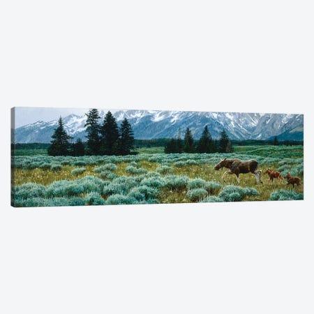 Moose III Canvas Print #MGU14} by Jan Martin Mcguire Canvas Artwork