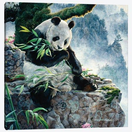 Panda I Canvas Print #MGU17} by Jan Martin Mcguire Canvas Art