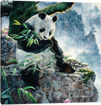 Panda I Canvas Art Print