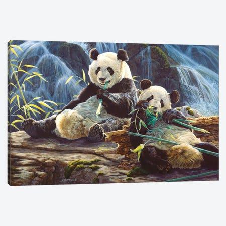 Panda III Canvas Print #MGU19} by Jan Martin Mcguire Canvas Print