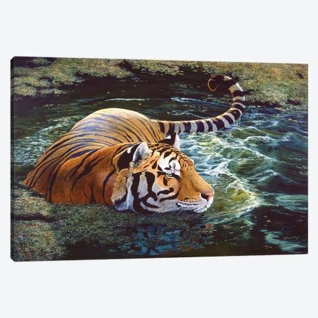 Tiger V Canvas Print #MGU22} by Jan Martin Mcguire Canvas Wall Art