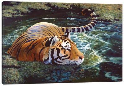 Tiger V Canvas Art Print