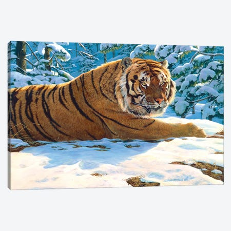 Tiger Snow Canvas Print #MGU23} by Jan Martin Mcguire Canvas Art