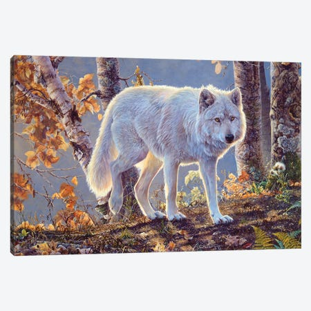 Wolf III Canvas Print #MGU24} by Jan Martin Mcguire Canvas Art Print