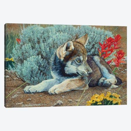 Wolf IV Canvas Print #MGU25} by Jan Martin Mcguire Art Print