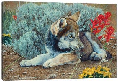 Wolf IV Canvas Art Print