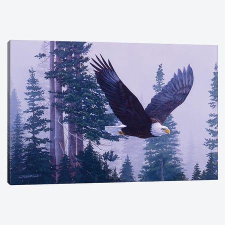 Eagle III Canvas Print #MGU4} by Jan Martin Mcguire Canvas Wall Art