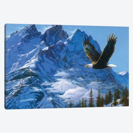 Eagle Mountains IV Canvas Print #MGU5} by Jan Martin Mcguire Canvas Wall Art