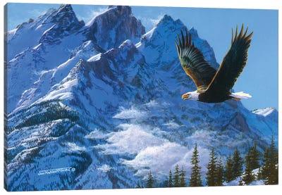 Eagle Mountains IV Canvas Art Print