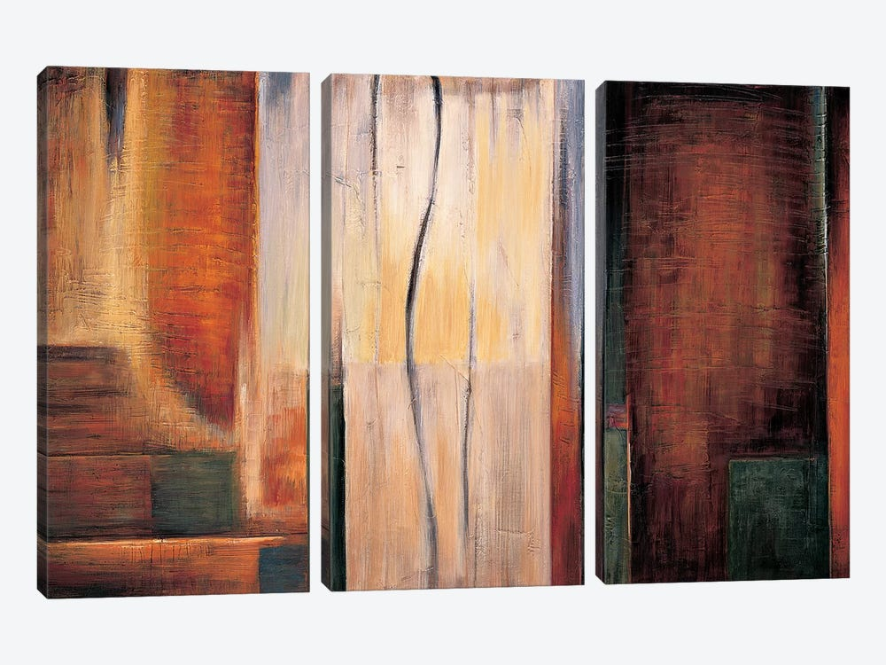 Global Perspective II by Max Hansen 3-piece Canvas Artwork