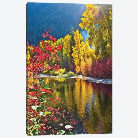 Autumn foliage, Nason Creek Area, Wenatchee National Forest, Washington State, USA Canvas Print #MHE10} by Michel Hersen Canvas Print