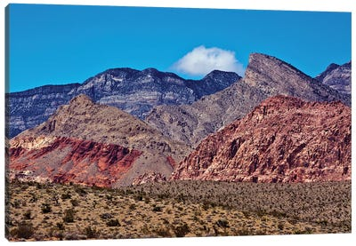Red Rock Canyon, National Conservation Area, Nevada, USA Canvas Art Print