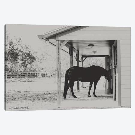 Horse at Home    Canvas Print #MHL13} by Melissa Hanley Canvas Art