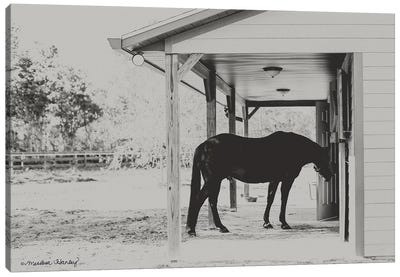 Horse at Home    Canvas Art Print
