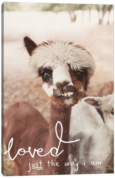Inquisitive Alpaca     Canvas Art Print