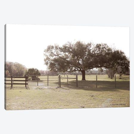 Sunset on the Farm  Canvas Print #MHL21} by Melissa Hanley Canvas Print