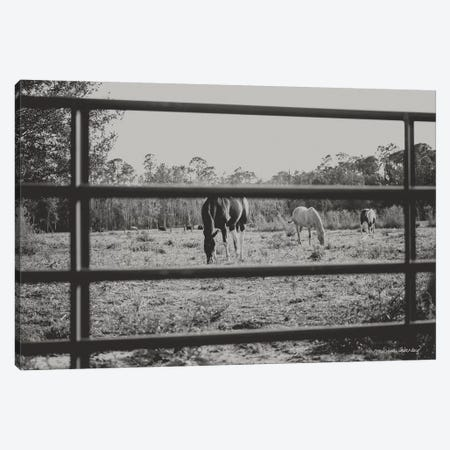 Farmhouse Perspective    Canvas Print #MHL9} by Melissa Hanley Canvas Artwork