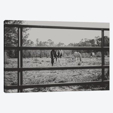 Farmhouse Perspective    Canvas Print #MHL9} by Melissa Hanley Canvas Artwork