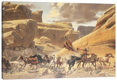 Through The Canyon Canvas Art Print