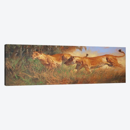 Hunting Canvas Print #MHM50} by Maher Morcos Canvas Print