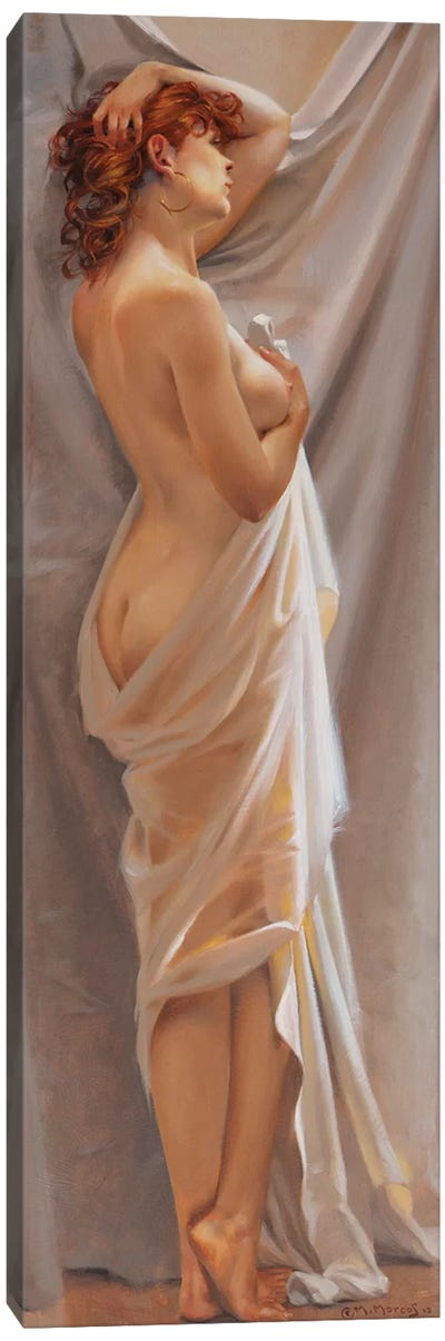 Malane Canvas Art Print