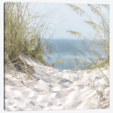 Over The Coastal Dune Canvas Print #MHO1} by Melody Hogan Canvas Print