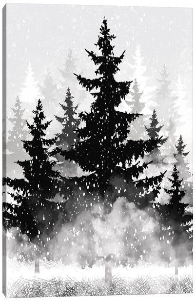 Misty Pines II Canvas Art Print