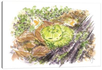 Forest Creature Canvas Art Print