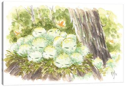 Kodama Canvas Art Print