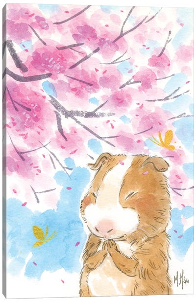 Cherry Blossom Guinea Pig Canvas Art Print