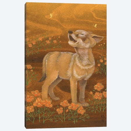 Coyote And Poppies Canvas Print #MHS138} by Martin Hsu Canvas Art Print