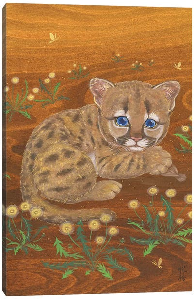 Cougar And Dandelions Canvas Art Print