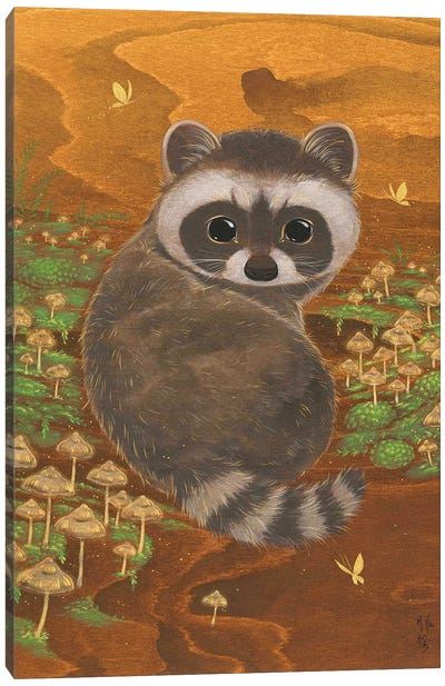 Raccoon And Mushrooms Canvas Art Print