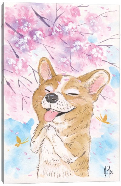 Cherry Blossom Wishes - Corgi Canvas Art Print