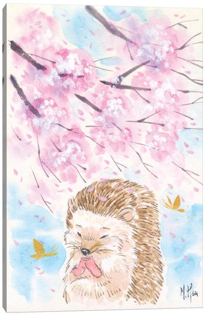 Cherry Blossom Wishes - Hedgehog Canvas Art Print