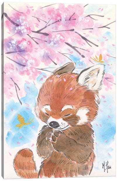 Cherry Blossom Wishes - Red Panda Canvas Art Print