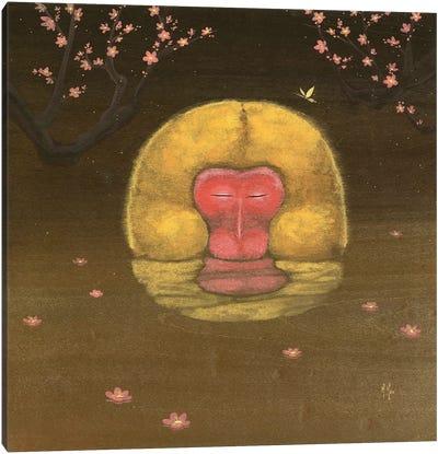 Monkey and Plum Blossoms Canvas Art Print