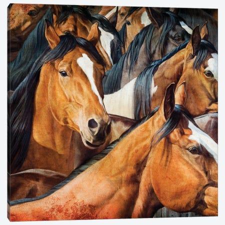 Almost Dun Canvas Print #MHT2} by Michelle Grant Canvas Print