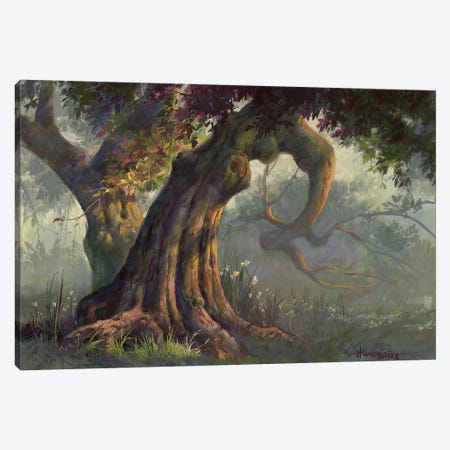 Day Dreaming Canvas Print #MHU12} by Michael Humphries Canvas Print