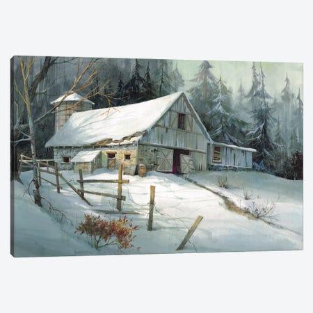 Ageless Beauty Canvas Print #MHU2} by Michael Humphries Canvas Wall Art