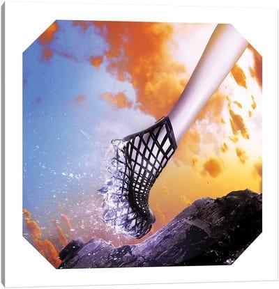 Iris Shoe Canvas Art Print