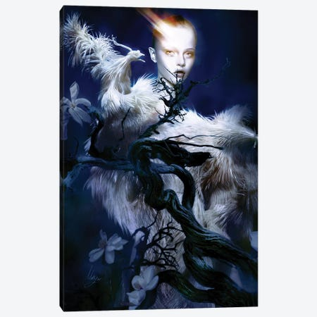 Iris Van I Canvas Print #MHY18} by Mahyar Kalantari Canvas Art Print
