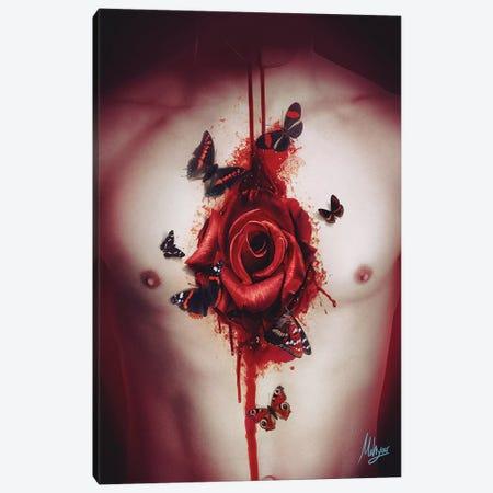 Love Canvas Print #MHY21} by Mahyar Kalantari Canvas Art