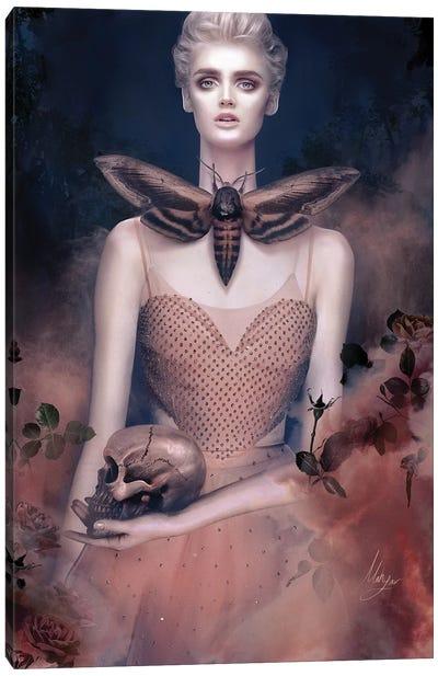 Valentino Pink Canvas Art Print