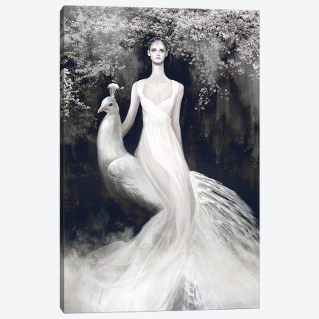 Valentino White Canvas Print #MHY31} by Mahyar Kalantari Canvas Print