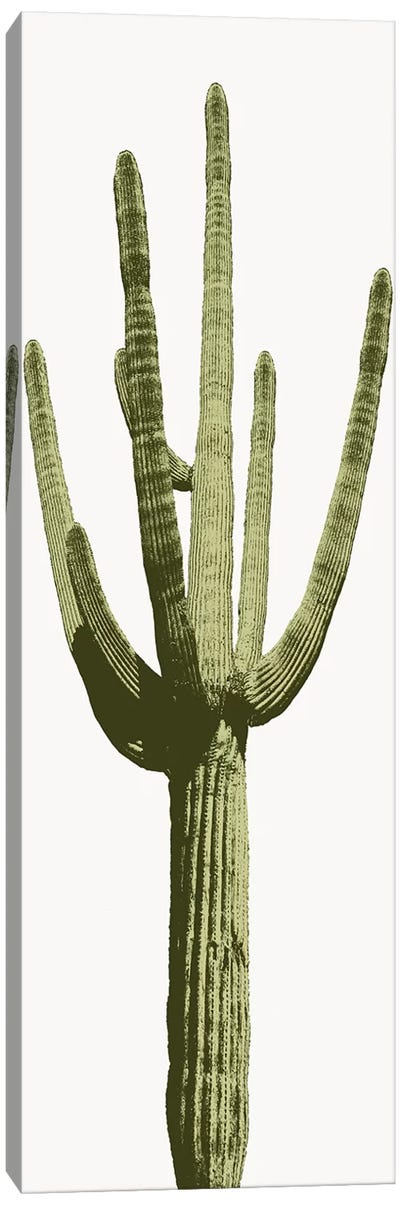 Saguaro Cactus I Canvas Art Print