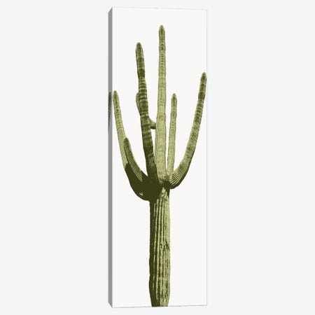 Saguaro Cactus I Canvas Print #MIA13} by Mia Jensen Canvas Artwork